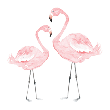 Dekornik® Adesivo parete Flamingos - L