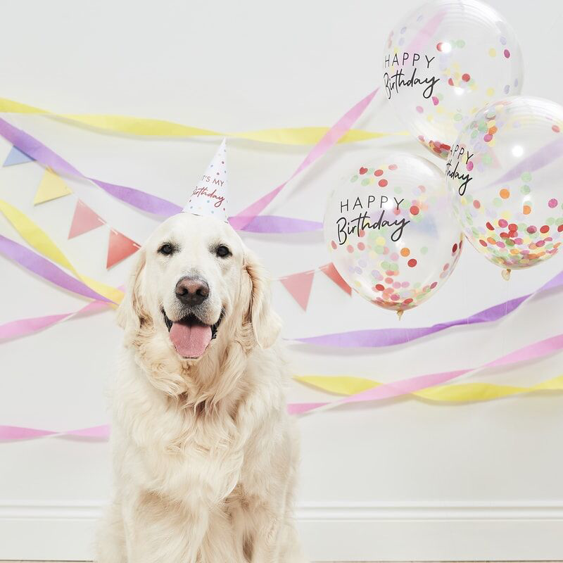 Immagine di Ginger Ray® Pet Party Kit