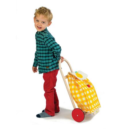 Tender Leaf Toys®  Cestino della spesa su ruote
