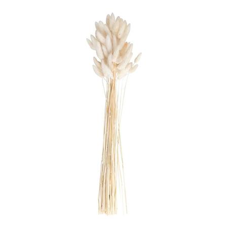 Ginger Ray® Decorazione per tavola Bunny Tails White